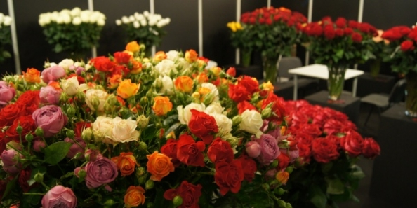 Flowers & HorTech Poland 2012